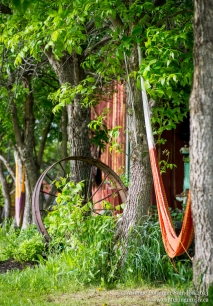 The festival is held on the Mattson family's magnificent ranch. There is beauty and art everywhere you look.